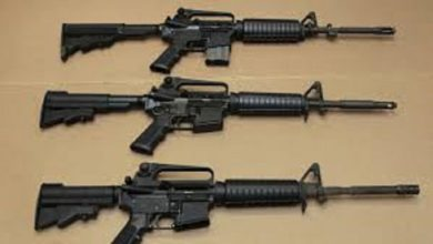 Photo of Sales of 'assault  and semi automatic rifles' banned in the country
